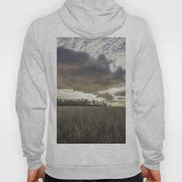 Clouds Above Us Hoody