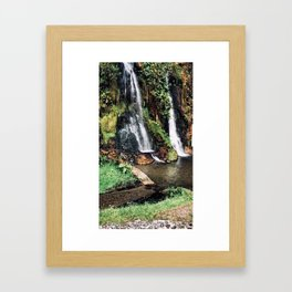 Cascada Framed Art Print