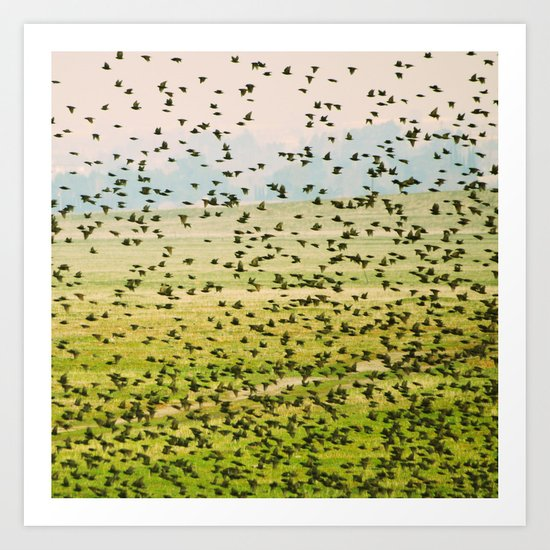 A Flock of Freedom Art Print