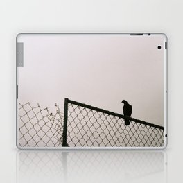 Pigeon Fence Laptop & iPad Skin
