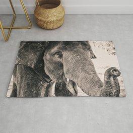 Closeup Elephant Rug