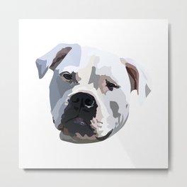 Bulldog drawing Metal Print
