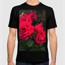 Red Roses for You T-shirt