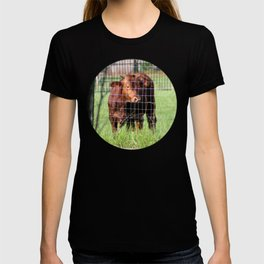Cow Beyond the Fence T-shirt