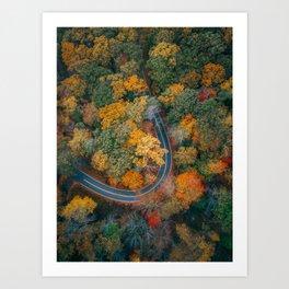 ColorFall Ride Art Print