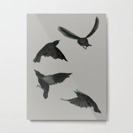 Common Starlings Metal Print