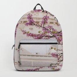 Paris in Spring Backpack
