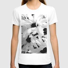 Shasta Daisies In The Light T-shirt