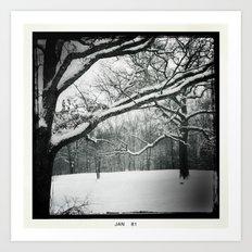 Winter's Grace Art Print
