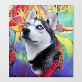 Dreaming Husky Canvas Print