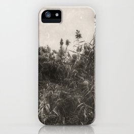Rushes iPhone Case