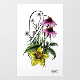 Florals: Medicinal Art Print