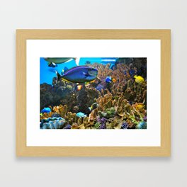 Fishies Framed Art Print