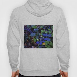 Exotic fruit and rich. Hoody