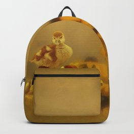 Ugly Ducklings And Daisies Backpack