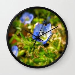 Baby Blue Flower Wall Clock