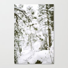Snowy Branch Canvas Print
