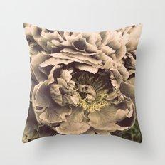 Old Throw Pillow