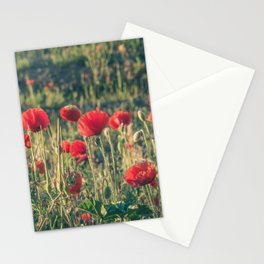 Field covered with red flowers illuminated by the sunrise sun. Flowers of delicate petals in the mea Stationery Cards