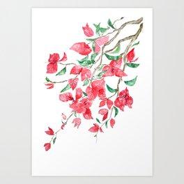 Reddish Pink Bougainvillea flower watercolor 2020 Art Print