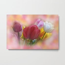 the beauty of a summerday -23 - Metal Print