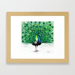 Pavo Indego Framed Art Print