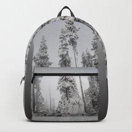 Qanik Backpack