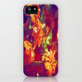 Sun Kissed Maroon iPhone Case