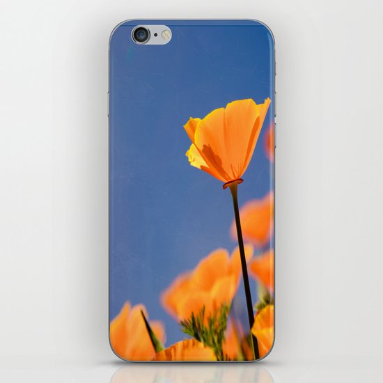 Poppies on Blue iPhone & iPod Skin