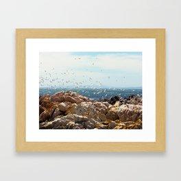 """Airborne (iii)"" by ICA PAVON Framed Art Print"
