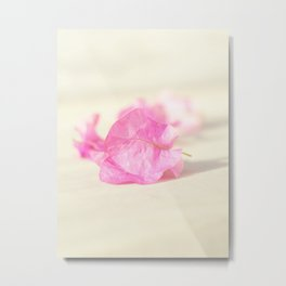 Floral collection. greece Metal Print