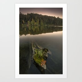 Clear Lake Art Print