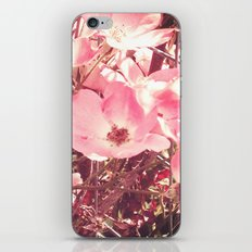 Late Summer Flowers iPhone & iPod Skin