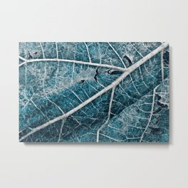 Frozen Winter Leaf Metal Print