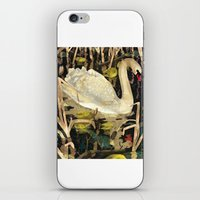 swan iPhone & iPod Skins featuring Swan by Lara Paulussen