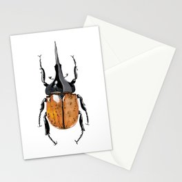 Hercules Beetle Stationery Cards