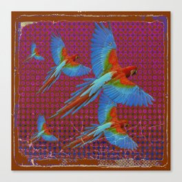 TROPICAL BLUE MACAWS MAROON-BROWN ART Canvas Print