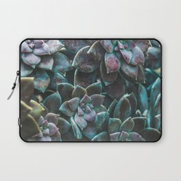 Botanical Gardens II - Succulents #321 Laptop Sleeve