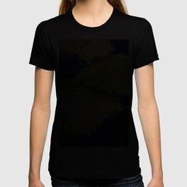 Longwood Gardens - Spring Series 129 T-shirt