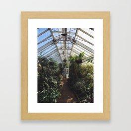 Inside the Winter Garden Framed Art Print