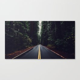 The woods have eyes Canvas Print