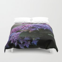 Big Hortensia flowers in front of a window Duvet Cover