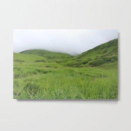 Alaskan Tundra Metal Print