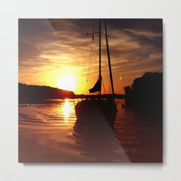 The Flying Wasp Metal Print
