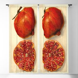 Vintage Botanical Pomegranate Blackout Curtain