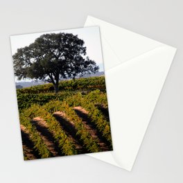 Paso Robles Vineyard Stationery Cards