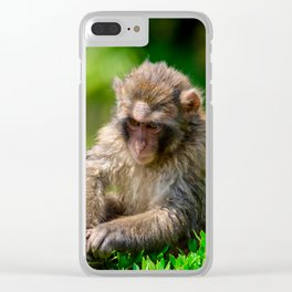 Snow Monkey Clear iPhone Case