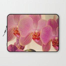 Triplet pink orchids  Laptop Sleeve