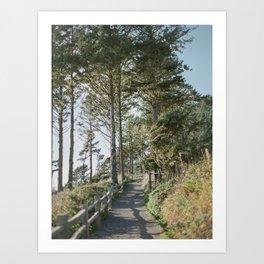 Oregon Coast Path / Fine Art Film Photography Art Print