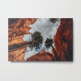 Trees in the Sky Metal Print